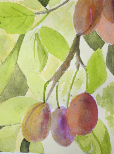 This is one of a series of images depicting fruit and flowers in the garden